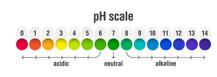 Chỉ số pH có vai trò quan trọng trong cuộc sống
