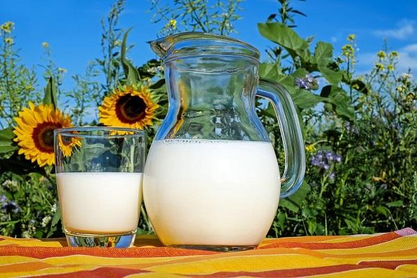Sữa tươi là nước uống không thể thiếu đối với người tập gym