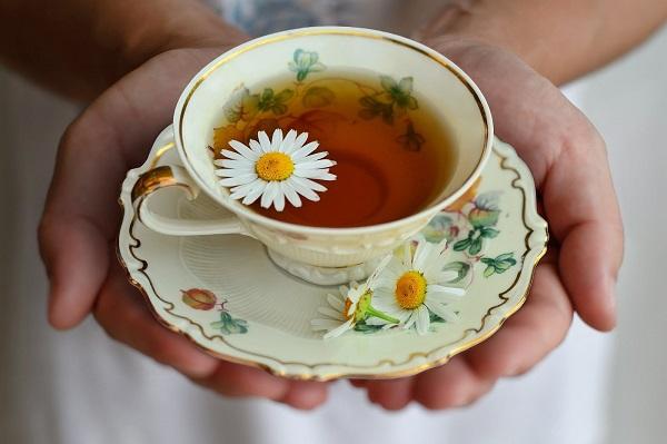 Trà hoa cúc khá nổi tiếng hữu dụng với người bệnh tiểu đường