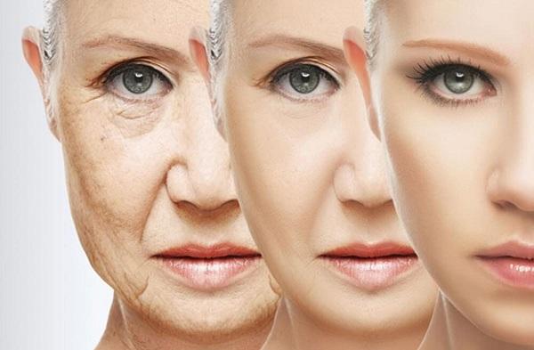 Việc vô hiệu hóa các gốc tự do bằng các chất chống oxy hóa sẽ giúp chống lão hóa hiệu quả