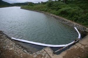 Nguồn nước mặt không thể sử dụng được nếu như chưa qua hệ thống lọc và xử lý