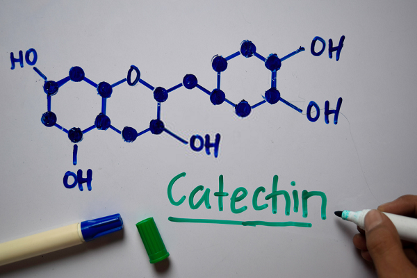 Catechin là gì
