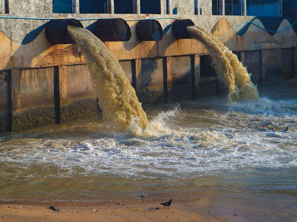 Các chất hữu cơ được phân hủybởi các vi khuẩn dẫn đến hiện tượng nhiễm nitrit trong môi trường đất và môi trường nước