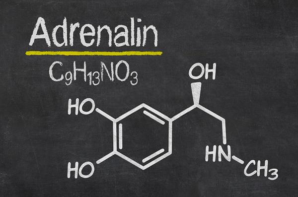 Adrenaline là gì? Công thức hóa học của Adrenaline