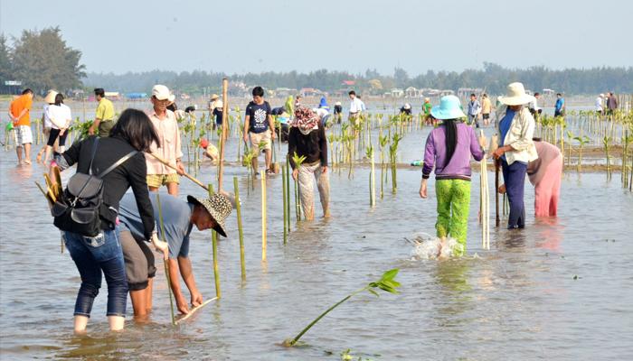 Các biện pháp bảo vệ nguồn nước
